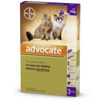 Advocate Large Cat - 3 Pack