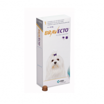 Bravecto Tablets - Toy Dog