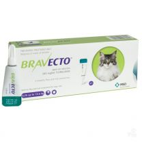 Bravecto Spot-On for Large Cats
