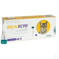 Bravecto Spot-On for Small Cats