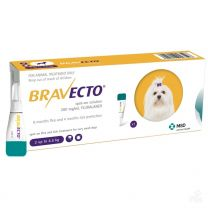 Bravecto Spot-On for Toy Dogs