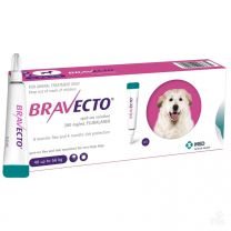 Bravecto Spot-On for XL Dogs