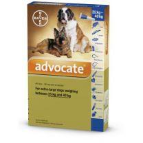 Advocate Extra Large Dog - 6 Pack