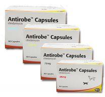 Antirobe Capsules - 25mg