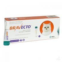 Bravecto Spot-On for Medium Cats