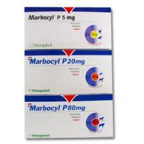 Marbocyl P Tablets - 80mg