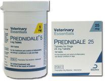 Prednidale Tablets - 25mg